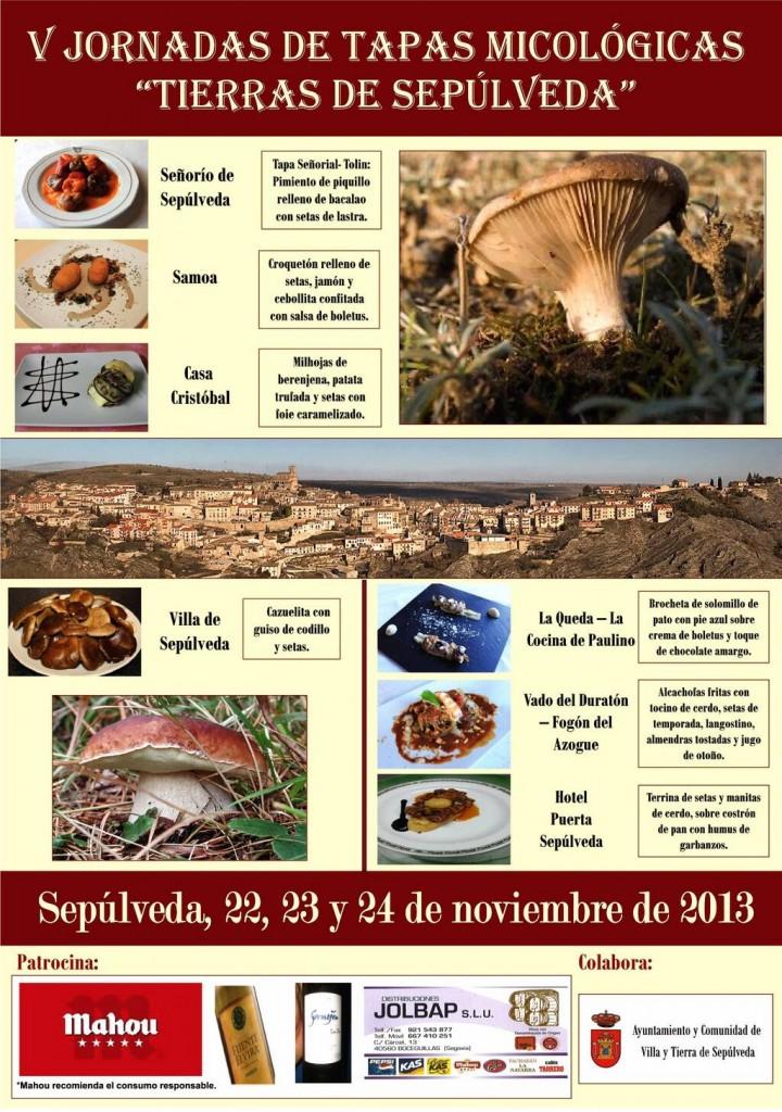 jornadasmicologicas2013