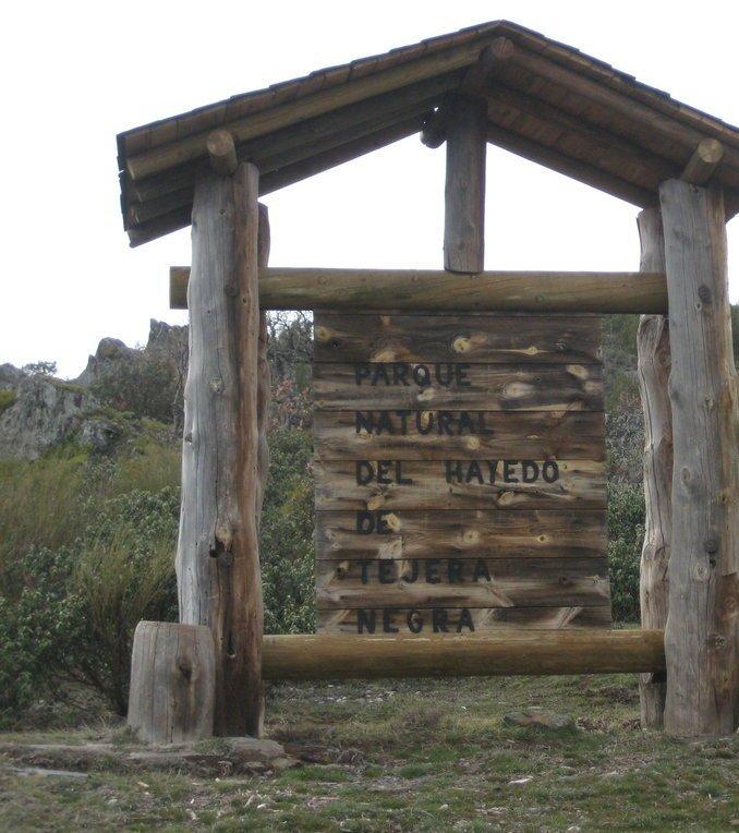 Guadalajara - Hayedo de la Tejera Negra - Cantalojas - Collado del Hornillo 2