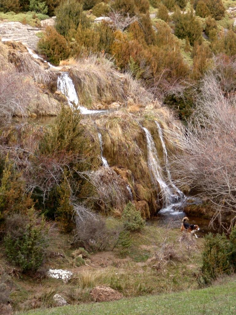 Nacimiento del rio Flumen