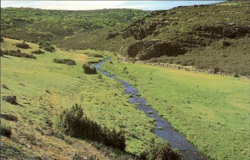 rios - Lillas - Sierra de Ayllon - Guadalajara