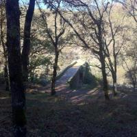 Casa Rural Ginkgos Otonno8