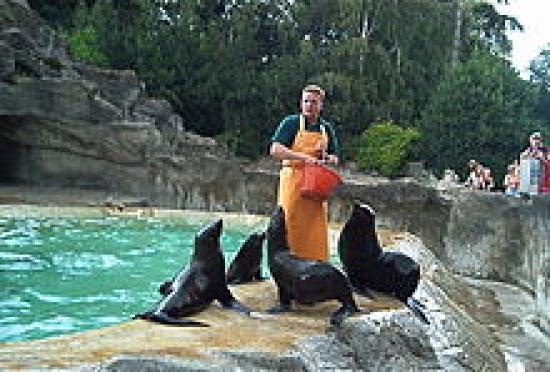 Zoo Basilea Suiza