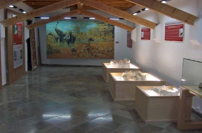 21_Museo_de_Prehistoria_y_Paleontologia_de_Orce_73