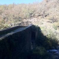 Casa Rural Ginkgos Otonno6