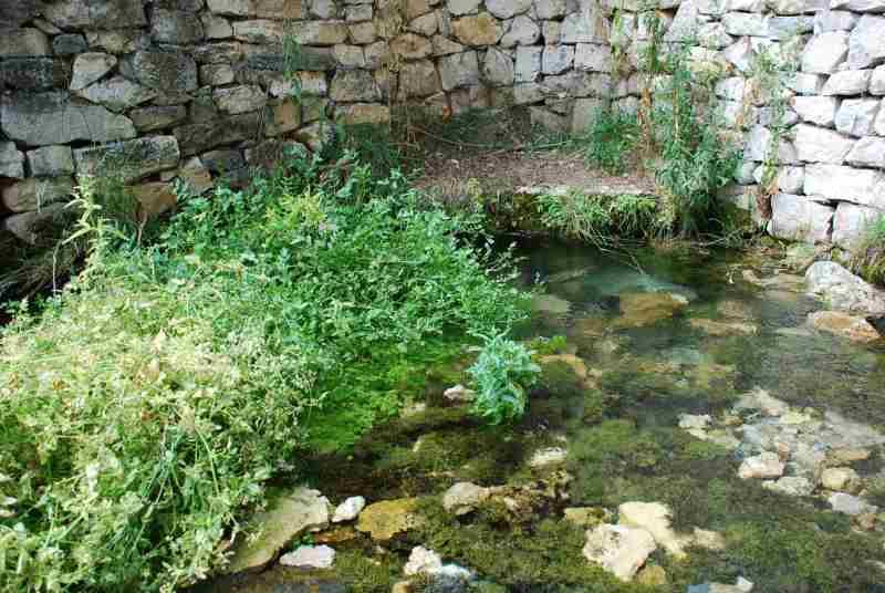 La laguna de Somolinos